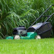 Rasen nicht zu kurz schneiden (Foto)