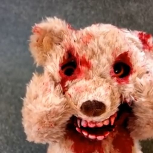 Krass! Dieser Teddybär kuschelt echt nicht gerne (Foto)