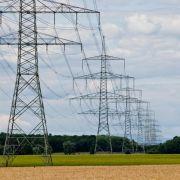 Bauern fordern höhere Entschädigungen bei neuen Stromtrassen (Foto)