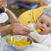 Das müssen Sie zu Elterngeld plus wissen (Foto)