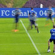 Nur 15 Spieler beim Schalker Trainingsauftakt (Foto)