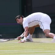 Wimbledon: Djokovic erneut im Halbfinale (Foto)