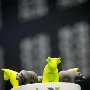 In sechs Schritten zum Exchange Traded Funds (Foto)