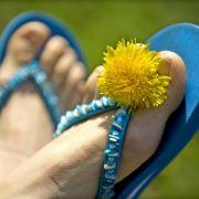 Stichprobe: Viele Flip-Flops mit Schadstoffen belastet (Foto)