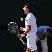 Djokovic zieht ins Wimbledon-Endspiel ein (Foto)