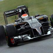 Sutil in Silverstone-Qualifikation vorzeitig raus (Foto)