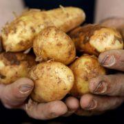 Junge Frau führt sich Kartoffel ein - zur Verhütung! (Foto)