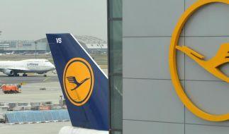 Lufthansa plant neue Billigangebote (Foto)