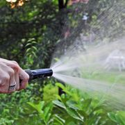 Besser auf das Pflanzen in der Sommerhitze verzichten (Foto)