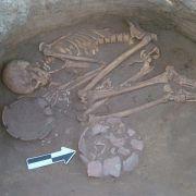Zahnstein verrät: Vorfahren hatten detailliertes Pflanzenwissen (Foto)