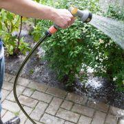 Viel hilft nicht viel - 6 Gartentipps für die heißenTage (Foto)