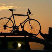 Wenn Surfbrett und Rennrad mit müssen: Autos für Sportler (Foto)