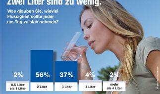 Die Mehrheit der Bundesbürger unterschätzt den täglichen Flüssigkeitsbedarf des Menschen. Das ergab eine aktuelle Umfrage von TNS Emnid. (Foto)
