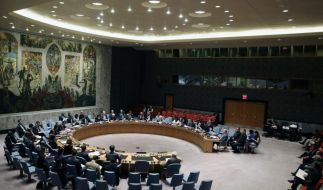 Obama und UN-Sicherheitsrat fordern sofortige Waffenruhe (Foto)