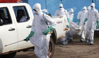 Ebola-Patient könnte in Hamburg behandelt werden (Foto)