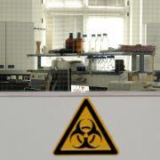 WHO: Keine weiteren Anfragen wegen Ebola-Behandlung in Deutschland (Foto)