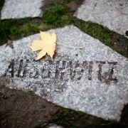Gedenken an Ermordung der Roma und Sinti in Auschwitz (Foto)