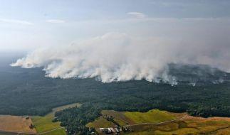 Gigantischer Waldbrand in Schweden außer Kontrolle (Foto)