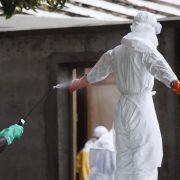 Virologe: Angst vor Ebola ist in Europa unbegründet (Foto)