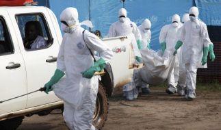 Bald 1000 Todesfälle: Millionenprogramme gegen Ebola (Foto)