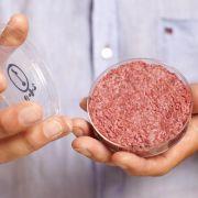 Kochen mit Fleisch aus dem Labor? (Foto)