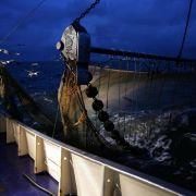 Quecksilber-Belastung der Ozeane teils mehr als verdreifacht (Foto)