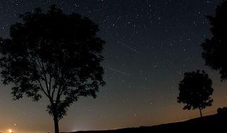 Eine Sternschnuppe im Foto - darf man sich da auch was wünschen? (Foto)