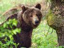 11 Tage allein in Sibirien