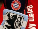 Regionalliga Saison 2014/2015