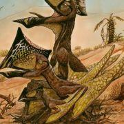 Fliegende Reptilien: Forscher finden neue Pterosaurier-Art (Foto)