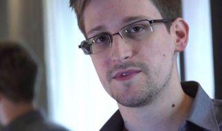 Snowden: NSA arbeitet an automatischer Cyberkriegs-Software (Foto)