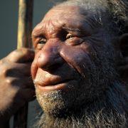 Neandertaler verschwanden vor 39 000 Jahren aus Europa (Foto)