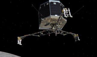 «Rosetta»-Mission: Forscher beraten über Kometen-Landeplatz (Foto)