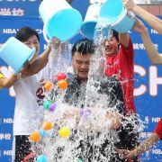 «Ice Bucket Challenge»:Wie Spendenexperten den Jux finden (Foto)