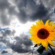 Unbeständiger Sommer geht zu Ende (Foto)