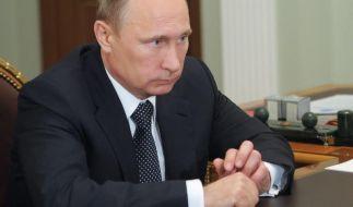 Putin lobt «Erfolge» der Rebellen in der Ostukraine (Foto)