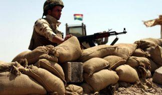 Waffenlieferung an Irak bleibt umstritten (Foto)