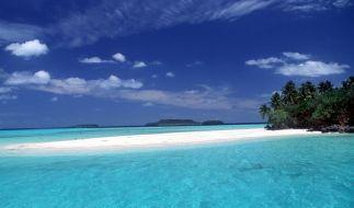 Das Meer als riesengroße Toilette? Forscher erklären, warum Urinieren im Ozean okay ist. (Foto)