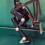 Japanischer Roboter joggt wie ein Mensch (Foto)