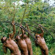 Indios erklären Holzfällern in Brasilien den Krieg (Foto)