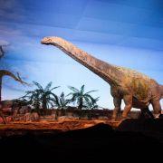 Bisher unbekannter Dinosaurier in Tansania entdeckt (Foto)