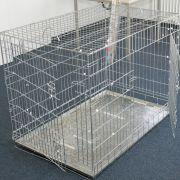 In den USA war eine Frau über zwei Monate in einem Hundekäfig gefangen.