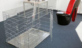 In den USA war eine Frau über zwei Monate in einem Hundekäfig gefangen. (Foto)