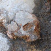 Erbgut-Analyse verrät den Ursprung der Europäer (Foto)