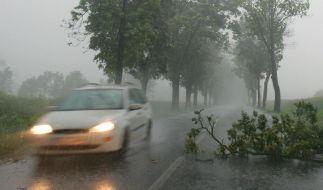 Heftige Regengüsse haben am Wochenende in weiten Teilen Deutschlands für Verkehrsbehinderungen gesorgt. (Foto)