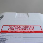 Organtransplantation:Einige Verstöße, weniger Manipulation (Foto)