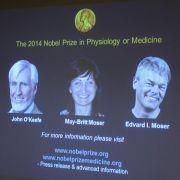 Medizin-Nobelpreis für Navigationssystem im Hirn (Foto)