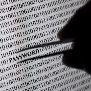 Bundesamt warnt vor wachsender Bedrohung durch Cyberkriminelle (Foto)