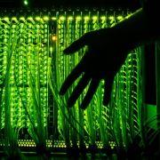 Bund und Telekom-Unternehmen planen Milliarden für Breitband-Ausbau (Foto)