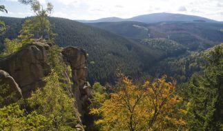 Traumhaft schöne Wanderwege für Genießer finden sich beispielsweise im Nordharz. (Foto)
